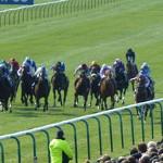 2000 Guineas horse race