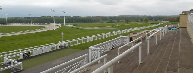 towcester greyhound derby